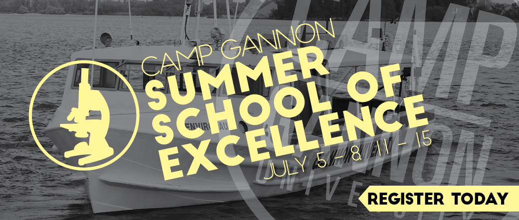 Camp Gannon Summer School of Excellence