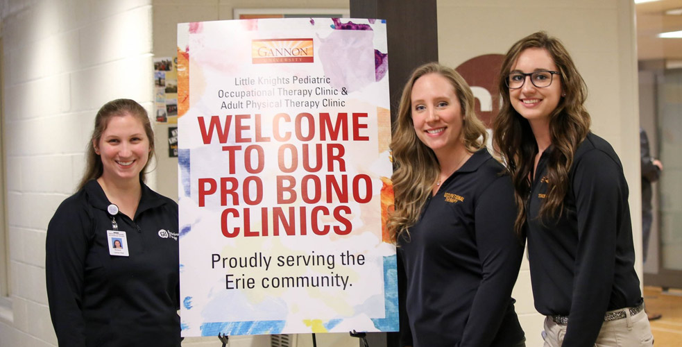 Occupational Therapy Students at Pro-Bono Clinic